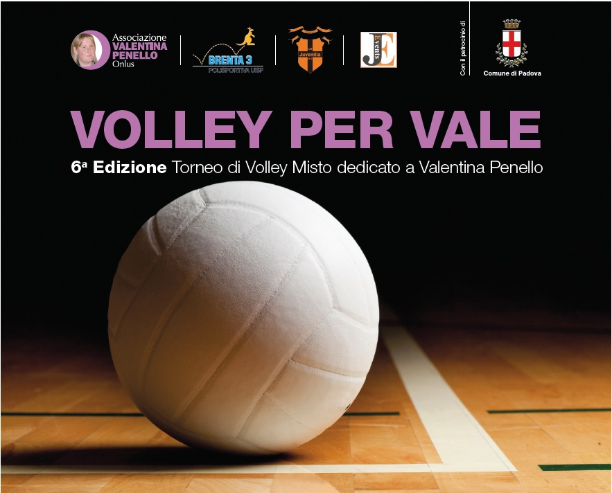 Volley Vale 2015